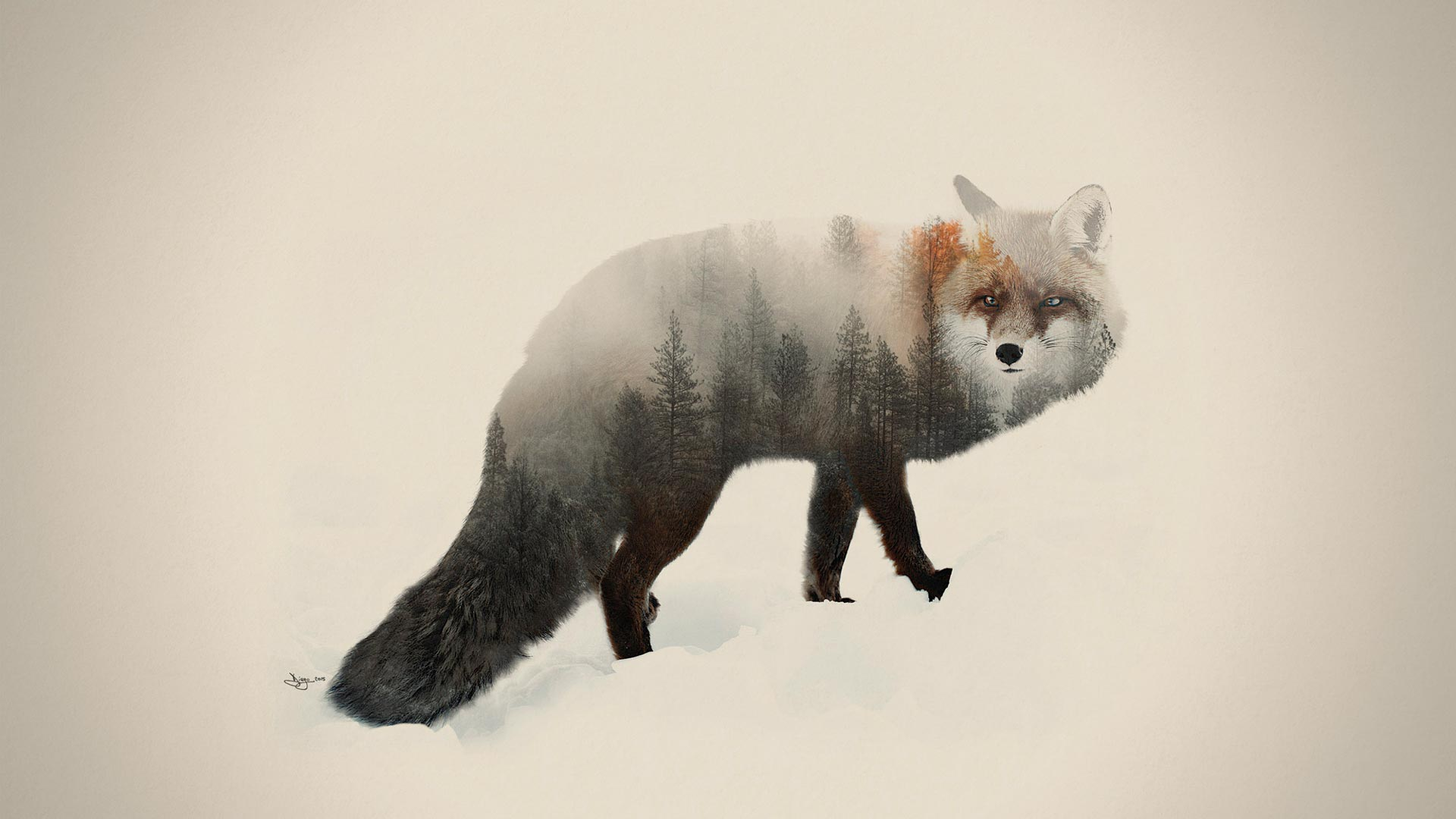 Artwork DEX fox - Double Exposure Animal & Landscape Portraits