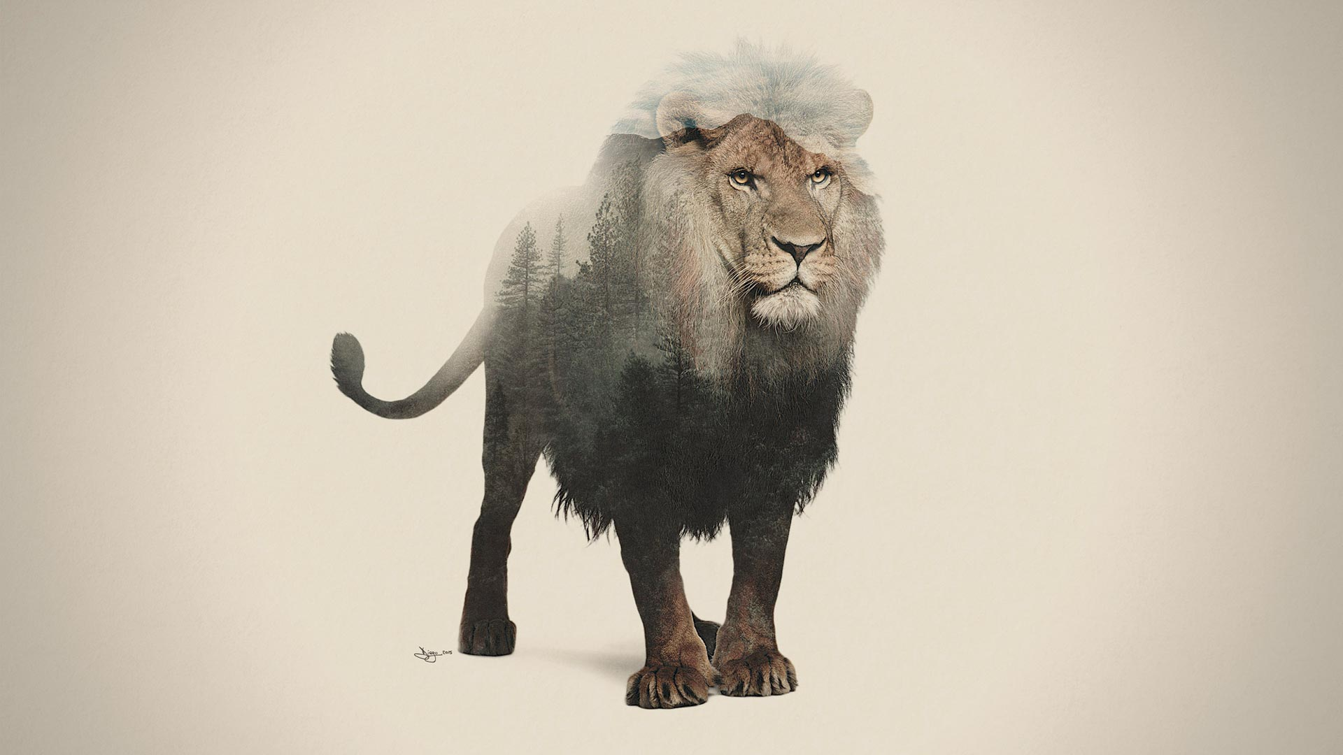 Artwork DEX lion - Double Exposure Animal & Landscape Portraits