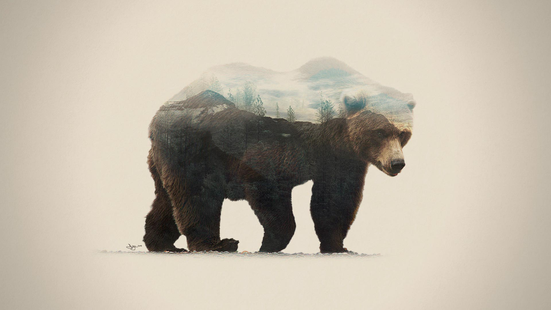 Artwork DEX orso - Double Exposure Animal & Landscape Portraits