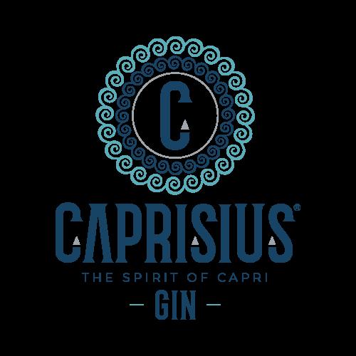 MAD13 creative room logo-Caprisius-Gin Clienti