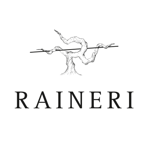 logo Raineri 1 - Homepage MAD13