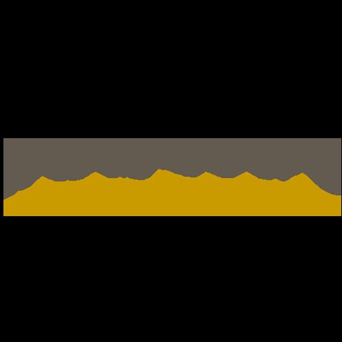 logo Ramoino - Clienti
