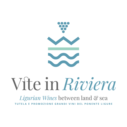 logo Vite In Riviera - Homepage MAD13